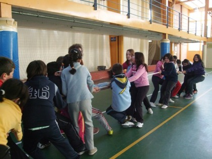 programa actividades area bienestar social
