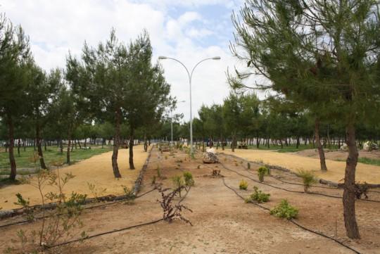 herencia parque serna